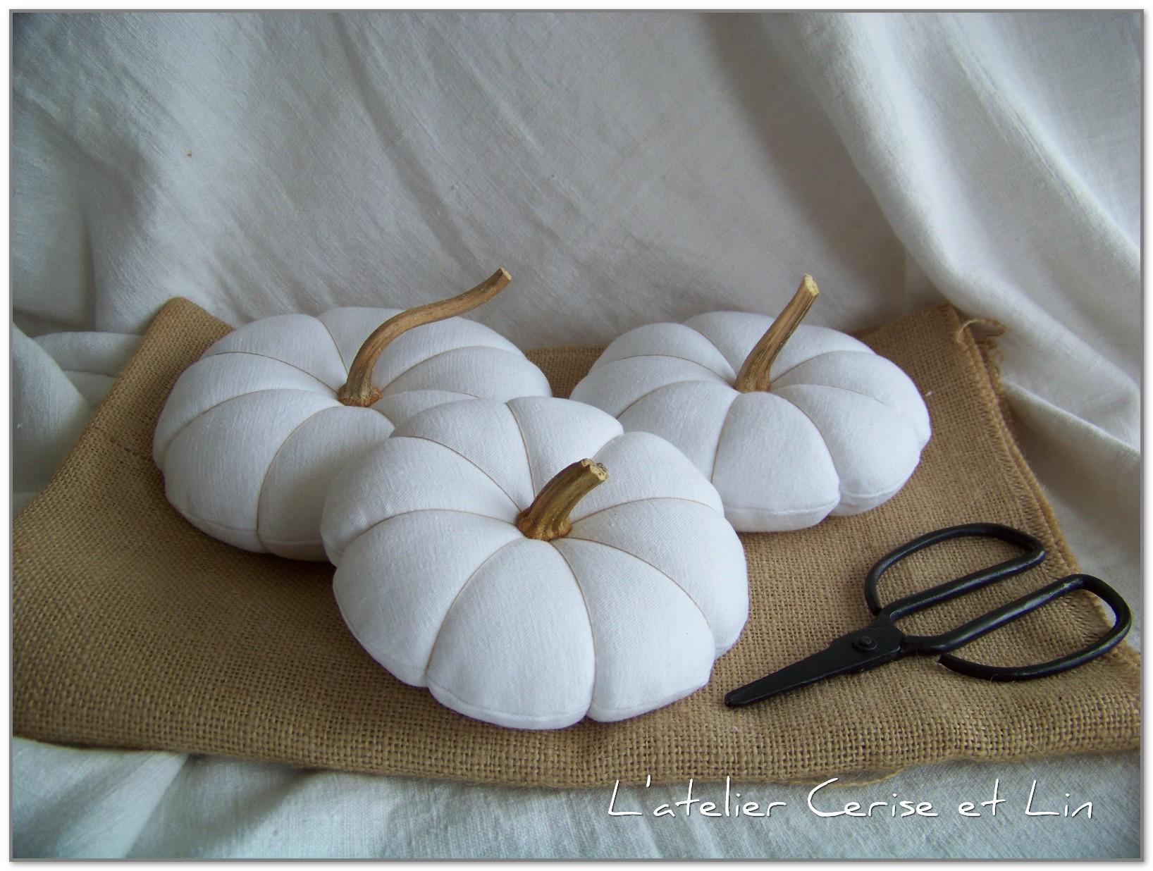 Citrouilles blanches 003