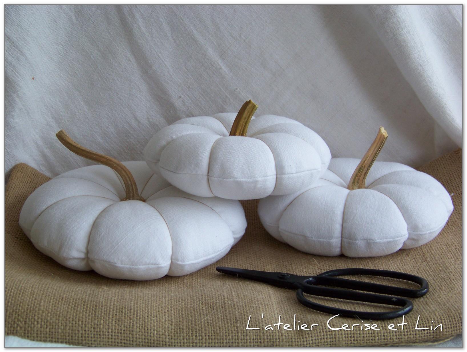 Citrouilles blanches 009